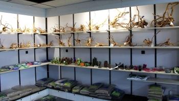 Kienhout voor uw aquarium